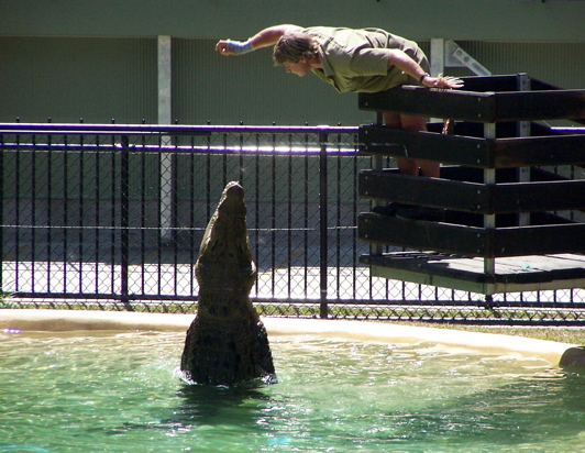 Steve's Crocodile Demonstration