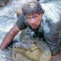 Steve the Crocodile Hunter